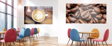 Wall Graphics | www.colour-frog.co.uk